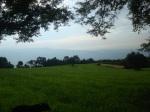 Campo de trigo de Tom1