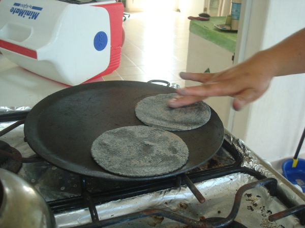 Tortillas de maiz azul 2