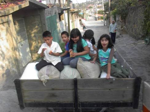Trigo 6 niños