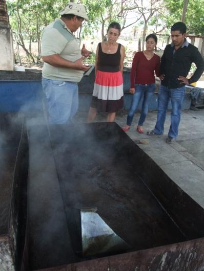 Pedro explica el procesode elaboración del azúcar