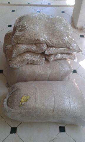 Llegó el arroz a Puerto Morelos